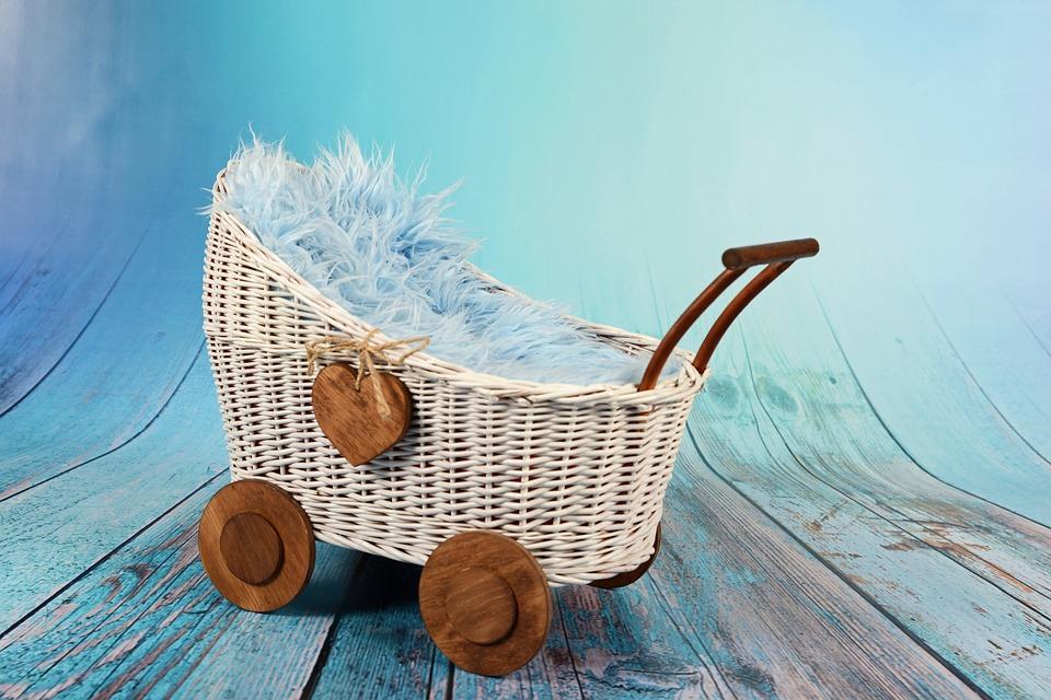Retrouvez des poussettes Goodbaby pour tous les budgets sur Natal Market